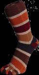 Zehensocken, sechsfarbig, Jahreszeiten, Herbst 35 - 41